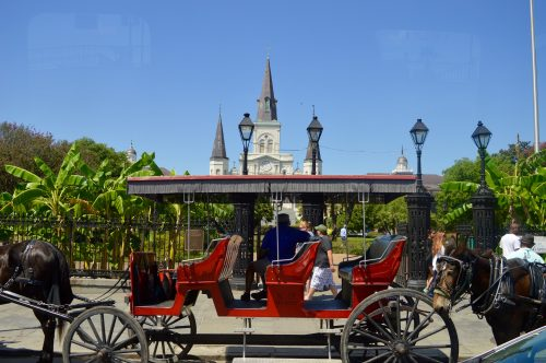 Living The High Life In The Big Easy